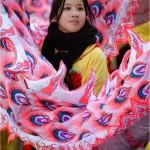 Chinese New year , Paris 2013